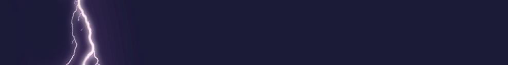 15000_7965_Custom Website Banner Nielsen